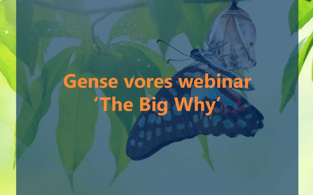 The Big Why webinar 04.06.2020