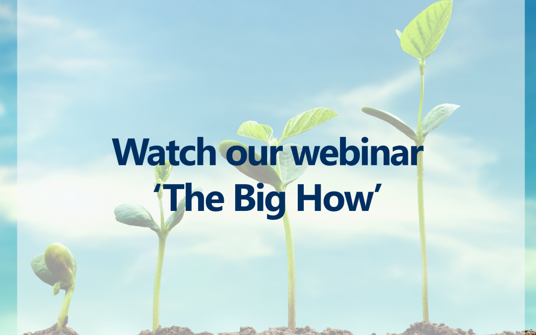 Webinar – The Big How